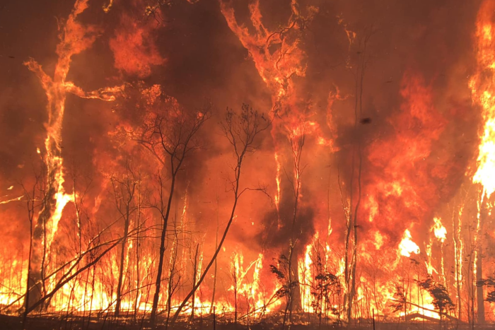 AUSTRALIAN FIRE INTENSITY, NOTHING TO DO WITH CLIMATE CHANGE